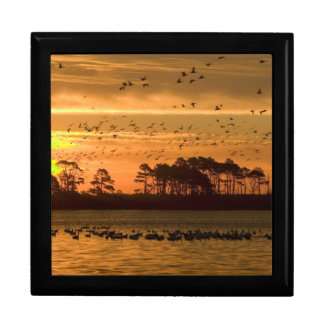 Sunset at Chincoteague Wildlife Refuge Virginia Gift Boxes