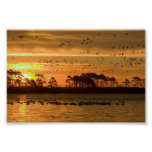Sunset at Chincoteague Wildlife Refuge Virginia Print