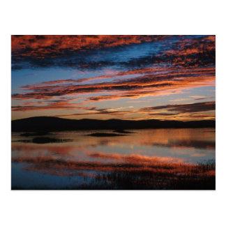 Sunset at Lower Klamath National Wildlife Refuge Postcard
