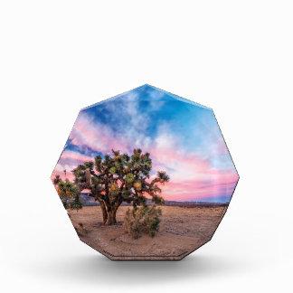 Sunset at Mojave Award