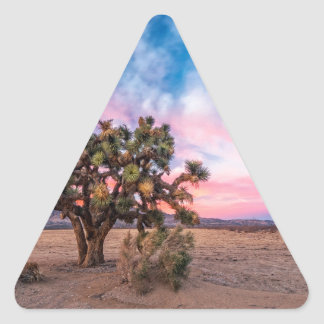 Sunset at Mojave Triangle Stickers