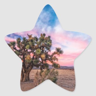 Sunset at Mojave Star Stickers