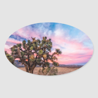 Sunset at Mojave Oval Stickers