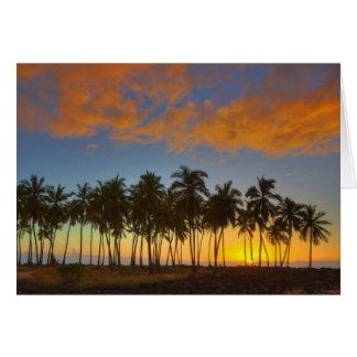 Sunset at National Historic Park Pu uhonua o Greeting Cards