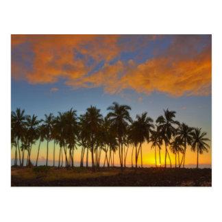 Sunset at National Historic Park Pu uhonua o Postcard