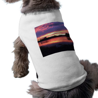 Sunset at Notre Dame T-Shirt