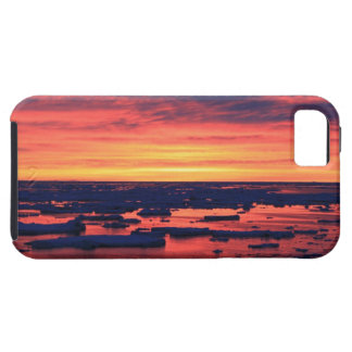 Sunset at Palmer Station iPhone SE/5/5s Case
