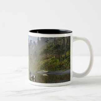 Sunset at Ruby Beach, Olympic National Park, Two-Tone Coffee Mug