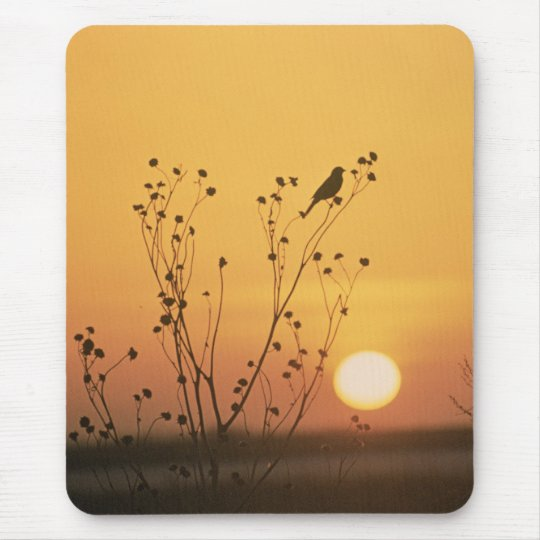Sunset at Tewaukon National Wildlife Refuge Mouse Pad