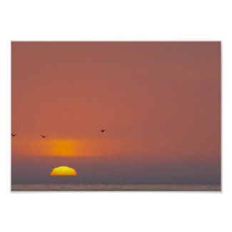 Sunset at the Beach Poster print