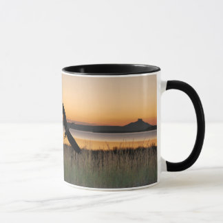 Sunset at the lake mug