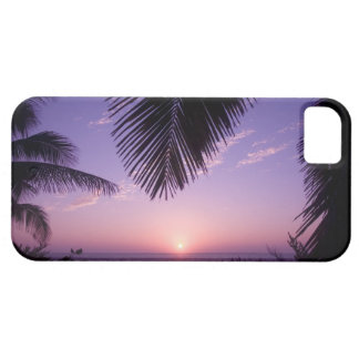Sunset at West End, Cayman Brac, Cayman Islands, iPhone 5 Covers
