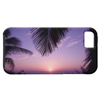 Sunset at West End, Cayman Brac, Cayman Islands, iPhone SE/5/5s Case