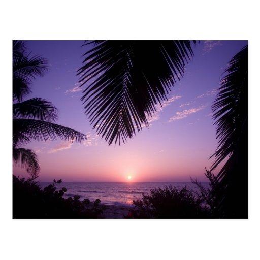 Sunset at West End, Cayman Brac, Cayman Islands, Post Card