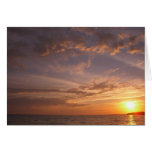 Sunset Bay V Card