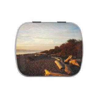 Sunset Beach Driftwood Candy Tin