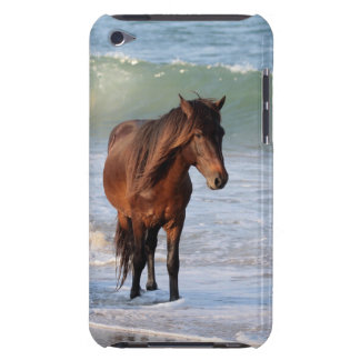 Sunset Beach Horse Case-Mate iPod Touch Case