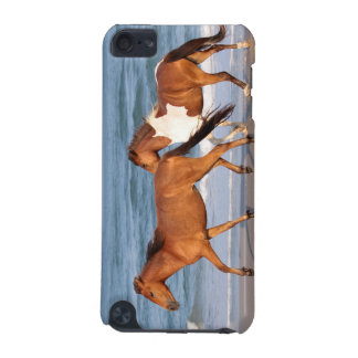 Sunset Beach Horse iPod Touch 5G Cover