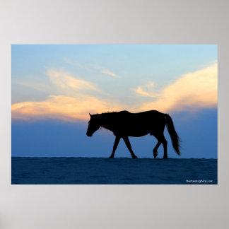 Sunset Beach Horse Poster