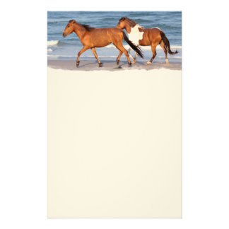 Sunset Beach Horse Personalized Stationery