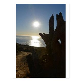 Sunset beach ocean postcard