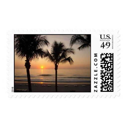 Sunset Beach Palm Tree Florida Photography Postage