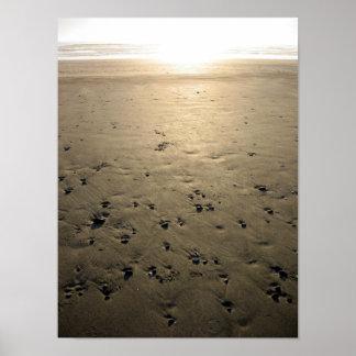 Sunset Beach Rocks Poster