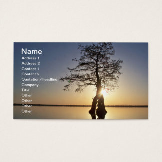 Sunset Behind a Tree Business Card