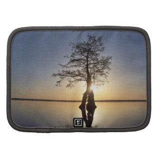 Sunset Behind a Tree Folio Planners