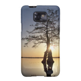 Sunset Behind a Tree Galaxy SII Covers