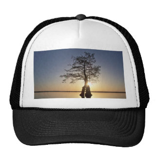 Sunset Behind a Tree Mesh Hats
