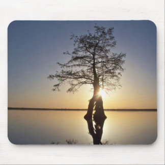 Sunset Behind a Tree Mouse Pad