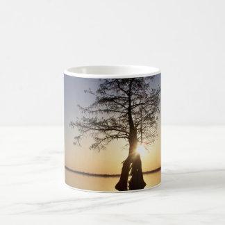 Sunset Behind a Tree Mugs