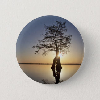 Sunset Behind a Tree Pinback Button