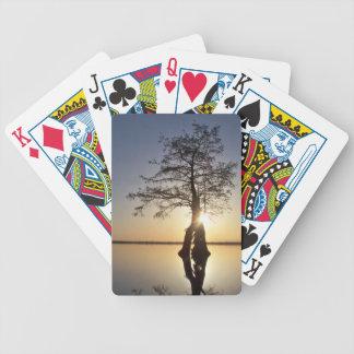 Sunset Behind a Tree Poker Deck