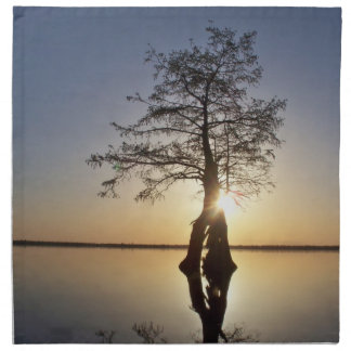 Sunset Behind a Tree Printed Napkins
