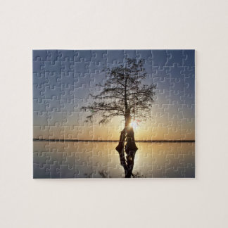 Sunset Behind a Tree Puzzles