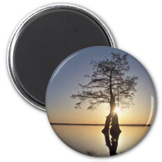 Sunset Behind a Tree Refrigerator Magnets