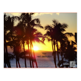 Sunset behind palm trees postcart postcard
