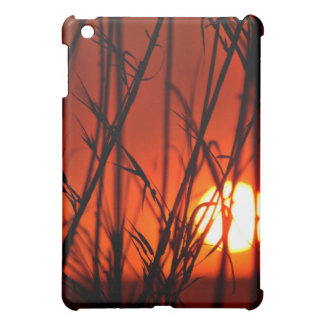 Sunset behind the bamboo cover for the iPad mini