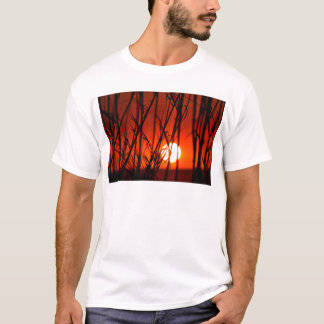 Sunset behind the bamboo T-Shirt