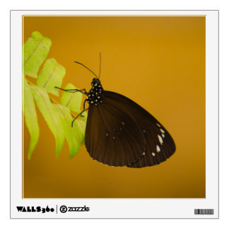 Sunset Butterfly Design Wall Decal