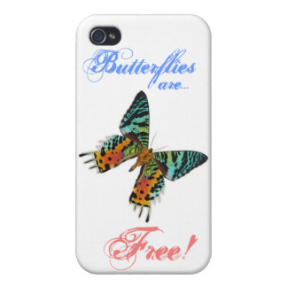 Sunset Butterfly Case For iPhone 4