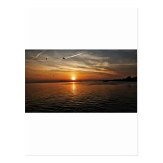 Sunset by the Sea Postcard