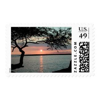 Sunset Carmel, Ca. Postage Stamp