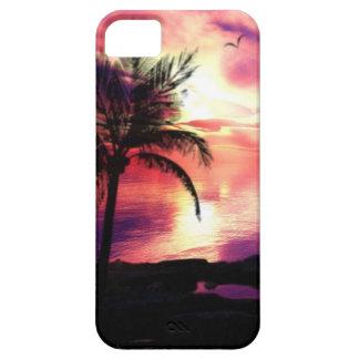 Sunset Case