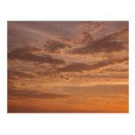 Sunset Clouds Postcard