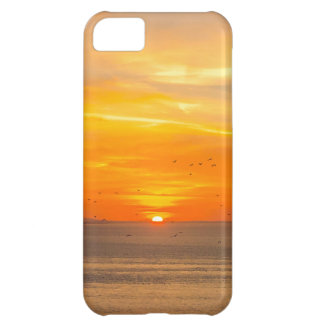 Sunset Coast with Orange Sun and Birds Cover For iPhone 5C