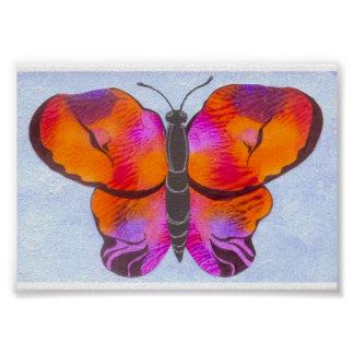 Sunset Colored Butterfly Painting Poster