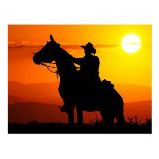 Sunset cowboy-Cowboy-sunshine-western-country Postcard